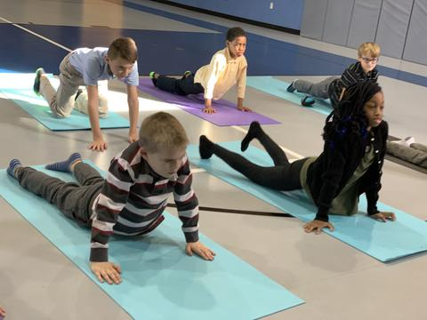 Neuroplasticity in Education through Yoga and Mindfulness
