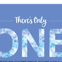 Chesapeake Bay Academy 22nd Annual Auction & Gala: Feb. 10